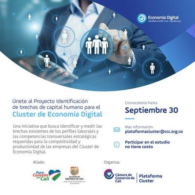 Cluster Eco Digital