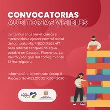 CONVOCATORIA AUDITORIAS VISIBLES