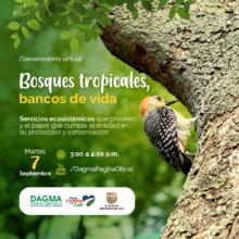 Conversatorio ambiental: Bosques tropicales, bancos de vida