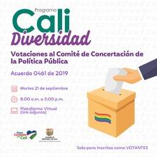 Votaciones al Comité de Conertación de la Política Pública CaliDiversidad.