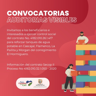 CONVOCATORIA AUDITORIAS VISIBLES