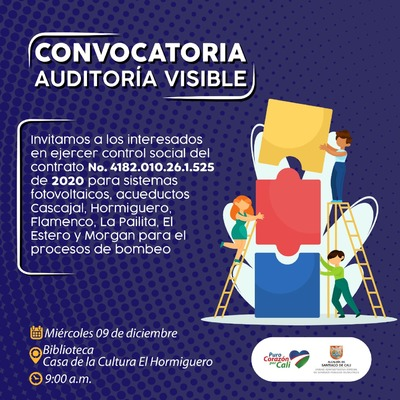 Convocatoria Auditoria Visible