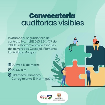 Convocatoria Auditoria Visibles