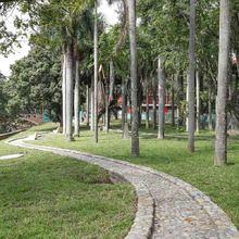 Obra parcial Parque Central de los Periodistas