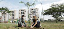 Ciudad pacifíca - zonas verdes