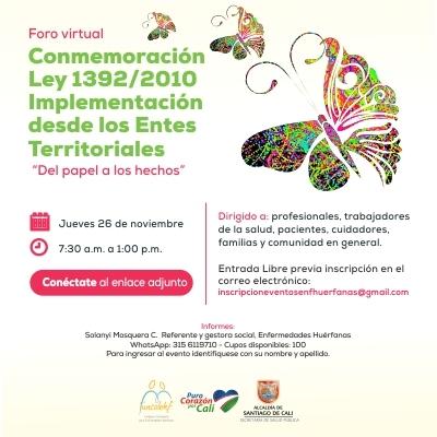 """Foro virtual Conmemoración Ley 1392/2010  Implementación desde los Entes Territoriales  """"Del Papel a los Hechos""""."""