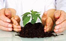 Día Nacional de la Educación Ambiental