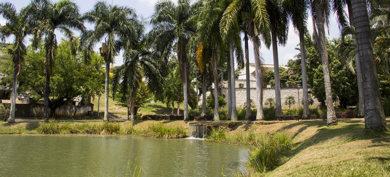 Dagma for Bares ciudad jardin cali