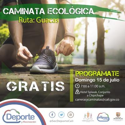 Caminata ecológica ruta Guacas