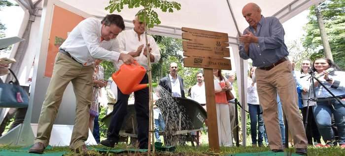 Alcalde Maurice Armitage refrenda su compromiso con el medio ambiente