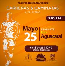 Caminata Ruta Aguacatal