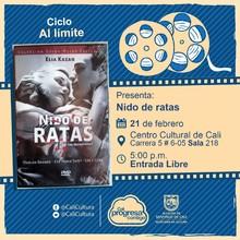 """""""Ciclo Al limite  Película: Nido de ratas de Elia Kazan  Año: 1954 Duración: 98 minutos Estados Unidos """" - Sala 218 – Centro Cultural de Cali"""