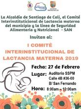 I Comité interinstitucional de lactancia materna 2019