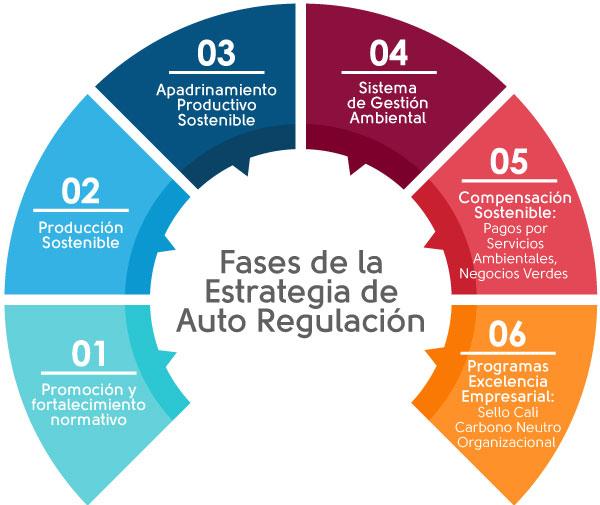 Grafico auto regulacion