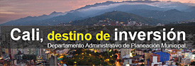 Plan Estad�stico Territorial 2015 - 2019