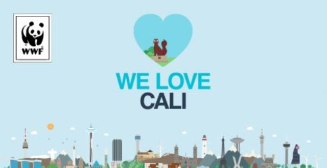 Cali logr� la segunda mejor votaci�n en We Love Cities