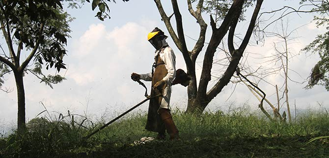Dagma realiza mantenimiento de zonas verdes en la Comuna 3